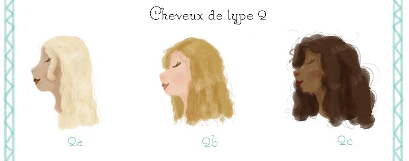 classification capillaire type de cheveux type 2