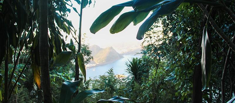 Rio de Janeiro, la nature en ville