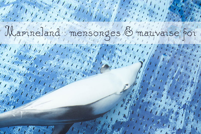 Marineland : mensonges et mauvaise foi