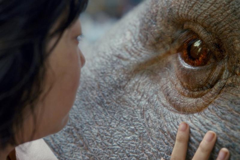 okja cochon géant