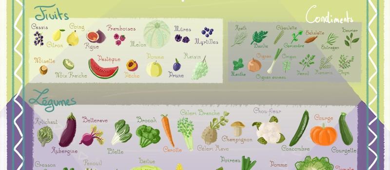 Fruits et légumes de Septembre - calendrier de saison #9